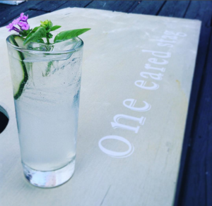 One Eared Stag restaurant